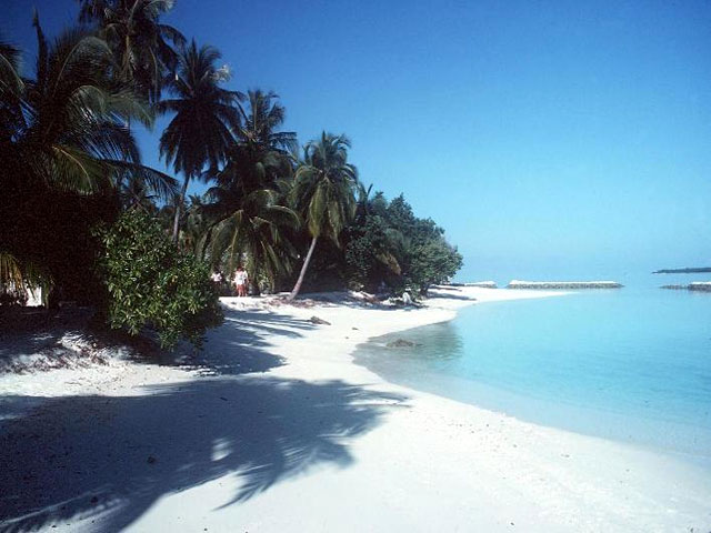 Ishulli i pabanuar - Faqe 2 77_maldive